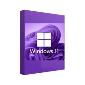 מערכת הפעלה Windows 11 Professional OEM משלוח דיגיטלי מהיר ומאובטח